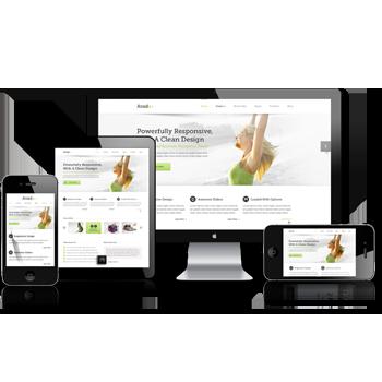 Responsive Website Design Services