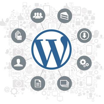 Wordpress Training Services
