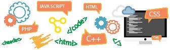 Website Design & Development Services