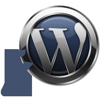 Wordpress troubleshooting services